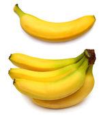 Collection of bananas — Stock Photo