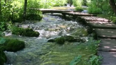 Summer mountain river with planked footway — Stock Video