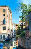 Venetië weergave met boom — Stockfoto