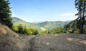 Yaz dağ manzarası — Stok fotoğraf