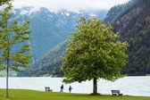 Achensee summer landscape (Austria). — Stock Photo