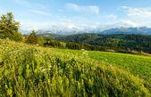 Vista de país de noite de montanha de verão — Foto Stock