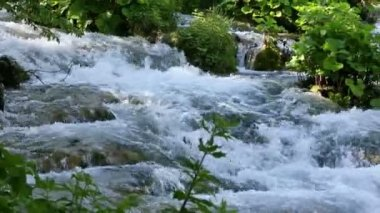 Summer mountain river — Stockvideo