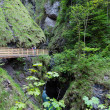 Family and Liechtensteinklamm gorge (Austria) — Stock Photo #13272222
