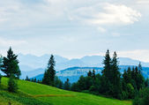 Summer misty mountain country view — Stock Photo