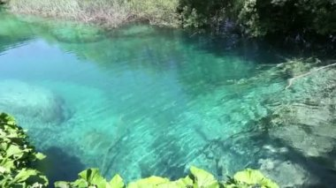 Summer azure limpid transparent lake (Plitvice, Croatia) — Stock Video