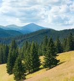 夏の山の風景 — ストック写真