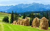 Sommer auf die berge land — Stockfoto