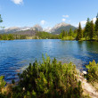 Strbske Pleso (Slovakia) spring view. — Stock Photo #14779591