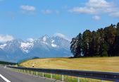 Weg naar de lente mountain view. — Stockfoto