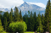 High Tatras (Slovakia) spring view. — Stock Photo