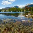 Strbske Pleso (Slovakia) spring view. — Stock Photo #14780167