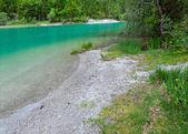 Plansee summer landscape (Austria). — Stock Photo