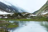 Silvretta alpy v létě pohled, rakousko — Stock fotografie