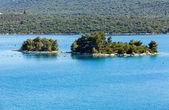 Petite île rocheuse avec des arbres — Photo