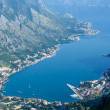 Kotor town on coast(Montenegro) — Stock Photo