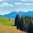 Stock Photo: Summer mountain panoram(Carpathian, Ukraine)