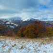 Stock Photo: First winter snow in autumn mountain and ski lift