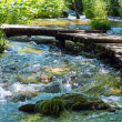 Summer mountain rushing river view — Stock Photo