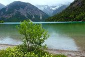 Plansee summer landscape (Austria). — ストック写真