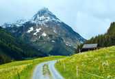 Silvretta Alps summer view, Austria — Stock Photo