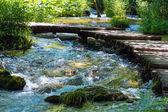 Summer mountain rushing river view — Stock Photo