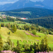 Stock Photo: Summer mountain country view