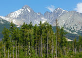 High Tatras (Slovakia) spring view. — Stock Photo
