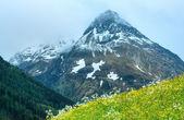 Silvretta Alperna sommar Visa, Österrike — Stockfoto