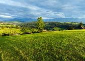 Letní horské večerní země pohled — Stock fotografie
