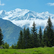 Mont Blanc mountain massif (view from Plaine Joux outskirts) — Stock Photo #18888749