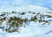 Beautiful winter mountain landscape. — Stockfoto