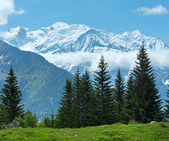 Mont Blanc mountain massif (view from Plaine Joux outskirts) — Stok fotoğraf