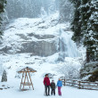 Alps waterfall winter view - 图库照片