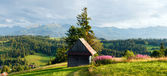Summer mountain country panorama. — Stock Photo