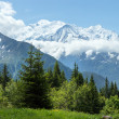Stock Photo: Mont Blanc mountain massif (view from Plaine Joux outskirts)