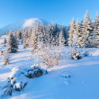 Sunrise winter mountain landscape - Foto de Stock