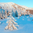Sunrise winter mountain landscape — Stock Photo