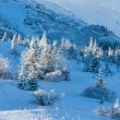 Morning winter mountain landscape — Stock Photo #20822057
