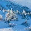 Morning winter mountain landscape - 图库照片