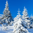Morning winter mountain landscape  — Stock Photo