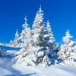 Morning winter mountain landscape - Stock Photo