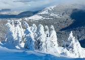 冬天与雪树山风景 — 图库照片