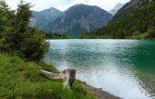 Plansee summer landscape (Austria). — 图库照片