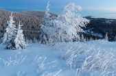 黎明前的冬天山风景 — 图库照片