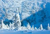 Dağ manzarası ile karlı ağaçların kış — Stok fotoğraf