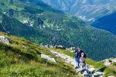 Montaña del verano tatra, polonia — Foto de Stock