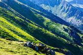 Montagnes de tatra été, pologne — Photo