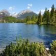 Strbske Pleso (Slovakia) spring view. — Stock Photo