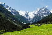 Summer Stelvio Pass (Italy) — Stock Photo